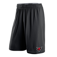 Men's Nike Dri-Fit Fly Shorts