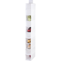 Hanging Shoe & Accessory Organizer, 10 Shelf